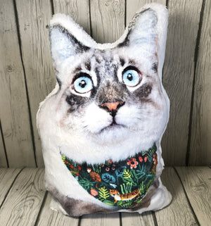 Custom Pet Plush Pillow | Ultra Soft Pillow-MrsCopyCat