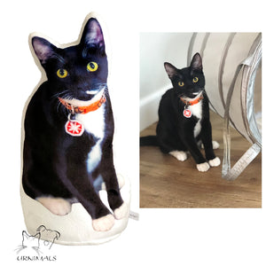 Custom Pet Shaped Photo Pillow Urn - mrscopycat