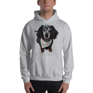 Dachshund Hoodie French Terry Hooded Pullover Custom Dog Lover Apparel