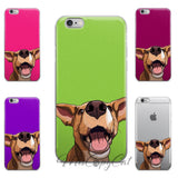 Red Heeler Mix iPhone Case - mrscopycat