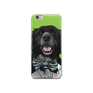 Border Collie iPhone Case - mrscopycat