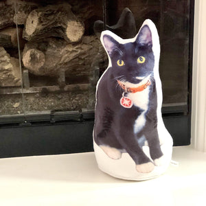 Custom Pet Pillow Urn Original URNIMAL™ | Photo-MrsCopyCat
