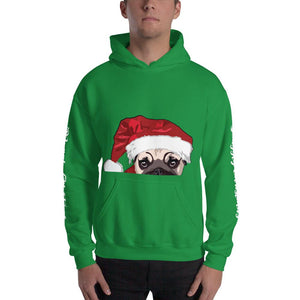 Christmas Hooded Sweatshirt | Junior Santa Dog Hoodie-MrsCopyCat
