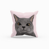 Russian Blue Cat Throw Pillow | Mike-MrsCopyCat