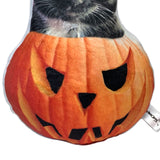 Custom Pumpkin Pet Halloween Decoration-MrsCopyCat