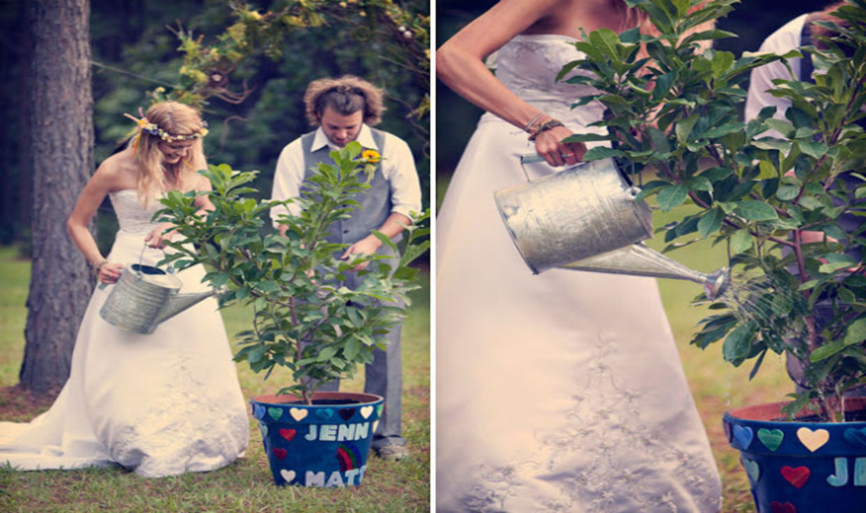 Ways To Make Your Wedding Unique  | Plant A Tree