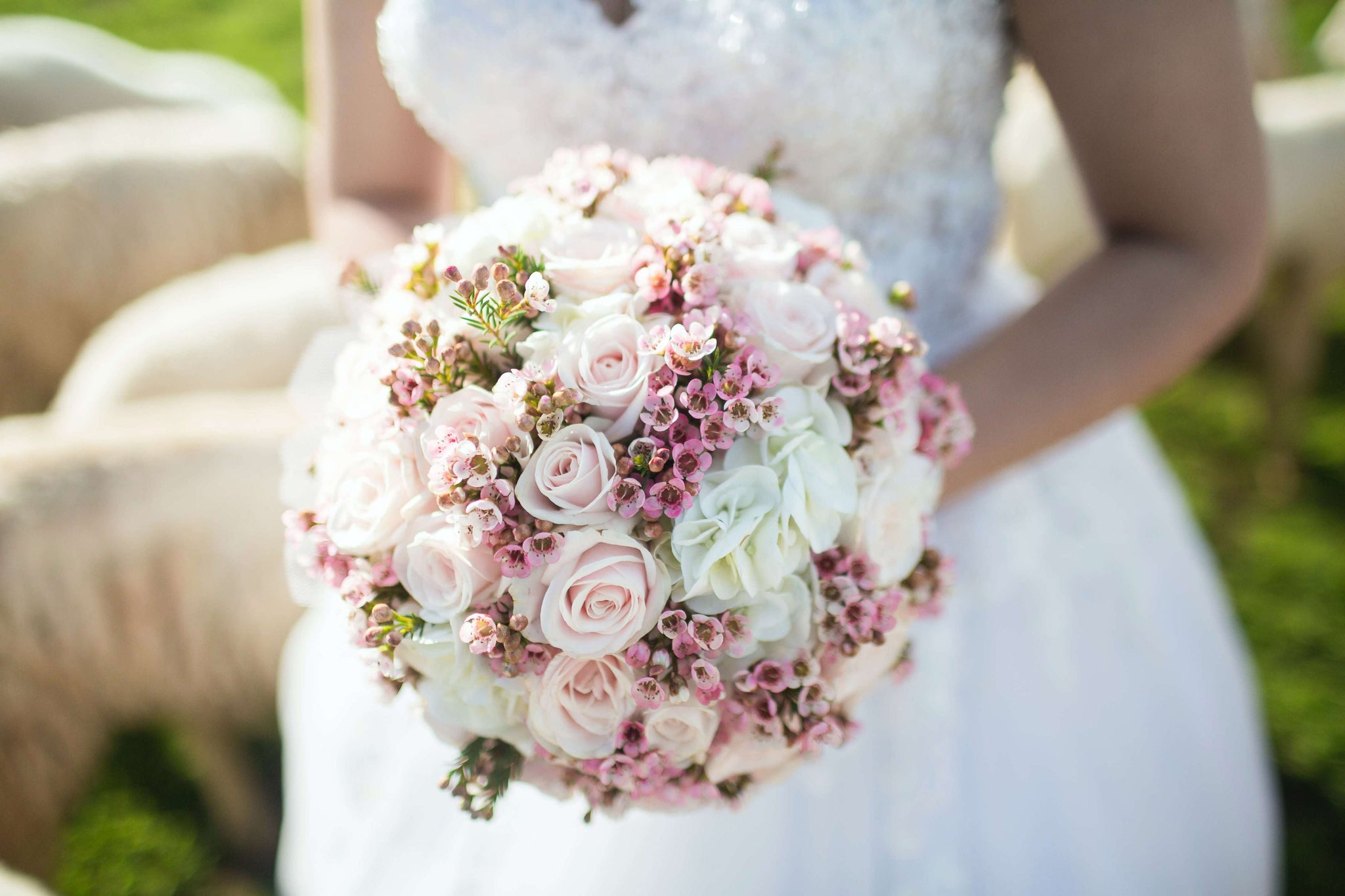 woman holding white and pink petal bouquet