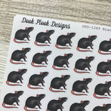 Realistic rat (white, black, hooded) stickers (DPD1289)