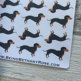 Dachshund (sausage dog) stickers (DPD506)