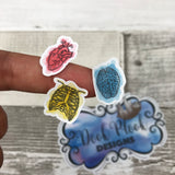 Anatomy stickers (brain heart ribs) stickers (DPD1028)