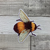 Bee (B) Die cut