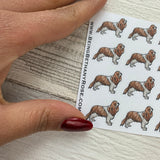Cavalier King Charles Spaniel stickers (DPD423)