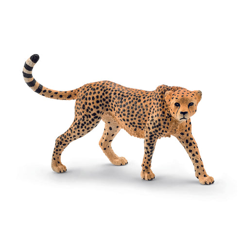 Schleich Cheetah, Female
