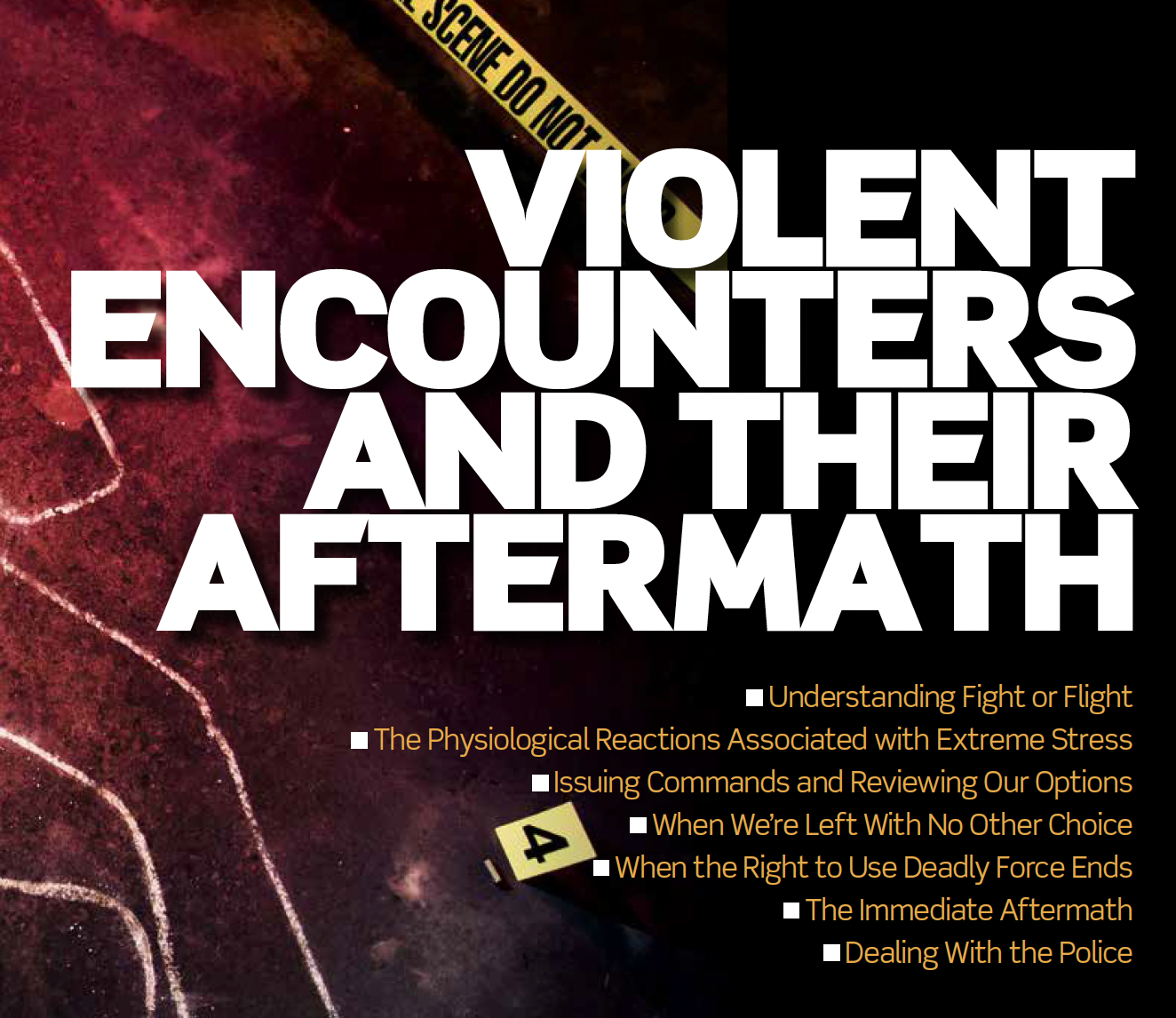 $25 Mini Class - Violent Encounters & the Aftermath