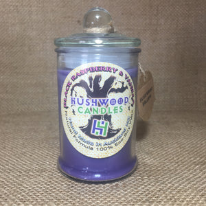 Black Raspberry and Vanilla - Medium Candle