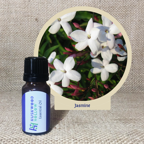 Jasmine 5% - Pure Therapeutic Grade Essential Oil - Hushwood Hollow