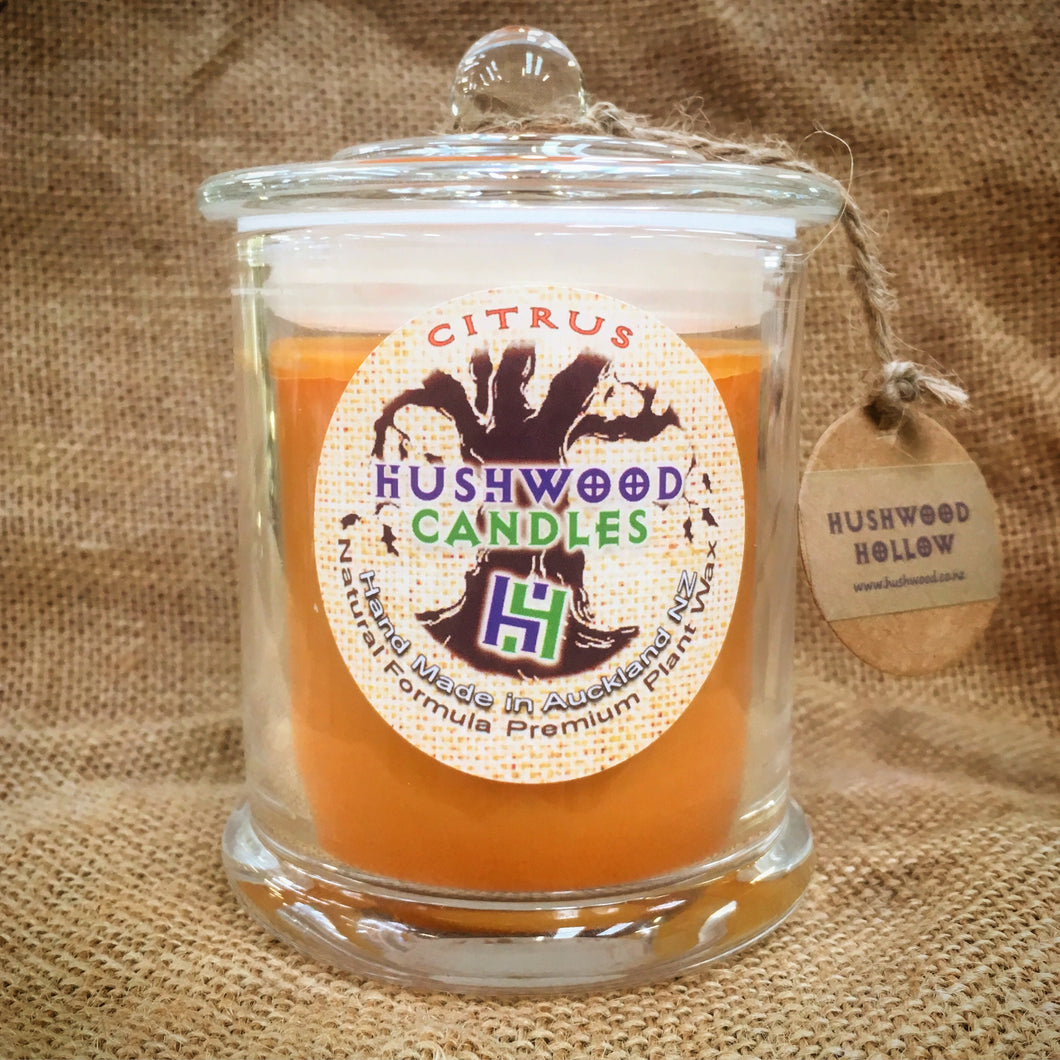Citrus - Large Candle - Hushwood Hollow