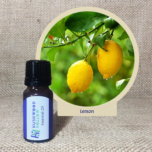Lemon - Pure Therapeutic Grade Essential Oil - Hushwood Hollow