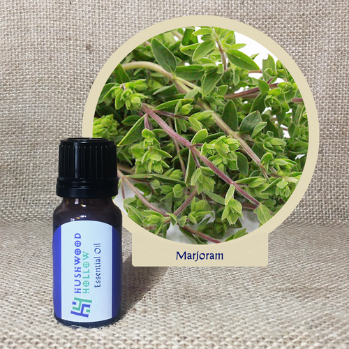 Marjoram - Pure Therapeutic Grade Essential Oil - Hushwood Hollow