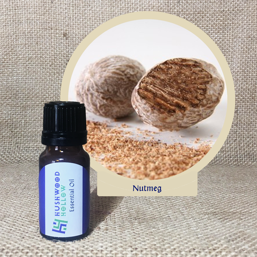 Nutmeg - Pure Therapeutic Grade Essential Oil - Hushwood Hollow