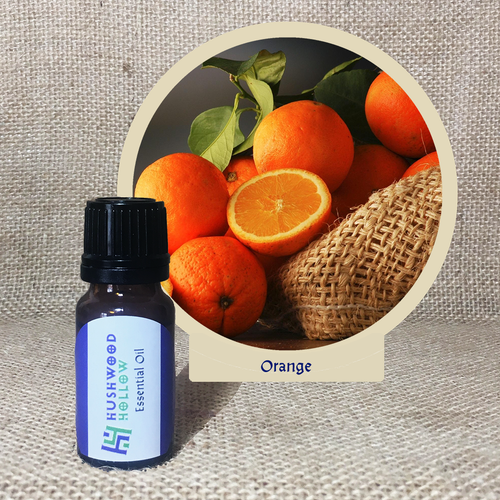 Orange - Pure Therapeutic Grade Essential Oil - Hushwood Hollow