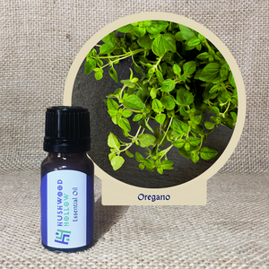 Oregano - Pure Therapeutic Grade Essential Oil - Hushwood Hollow