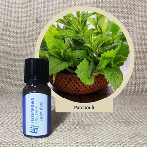 Patchouli - Pure Therapeutic Grade Essential Oil - Hushwood Hollow