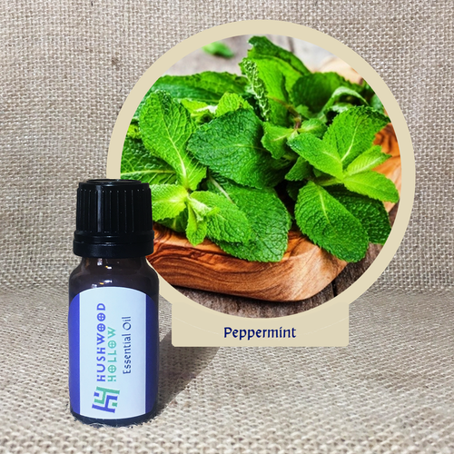 Peppermint - Pure Therapeutic Grade Essential Oil - Hushwood Hollow