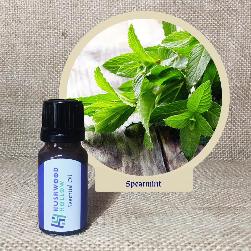 Spearmint - Pure Therapeutic Grade Essential Oil - Hushwood Hollow