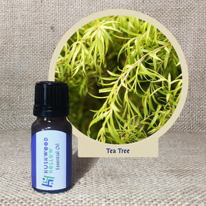 Tea Tree - 20% perfumery tincture