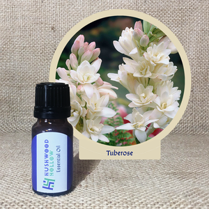 Tuberose 100% - Pure Therapeutic Grade Essential Oil - Hushwood Hollow