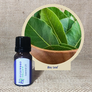 Bay Leaf - Pure Therapeutic Grade Essential Oil - Hushwood Hollow