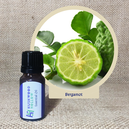 Bergamot - Pure Therapeutic Grade Essential Oil - Hushwood Hollow