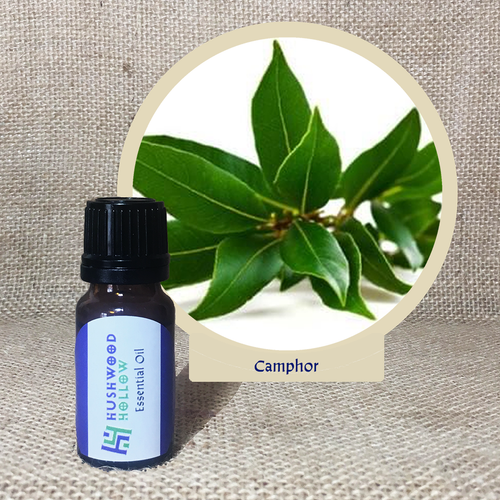 Camphor - Pure Therapeutic Grade Essential Oil - Hushwood Hollow