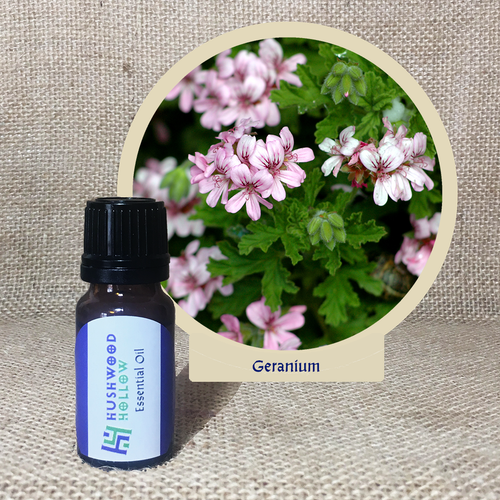 Geranium - Pure Therapeutic Grade Essential Oil - Hushwood Hollow