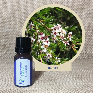Kanuka - Pure Therapeutic Grade Essential Oil - Hushwood Hollow