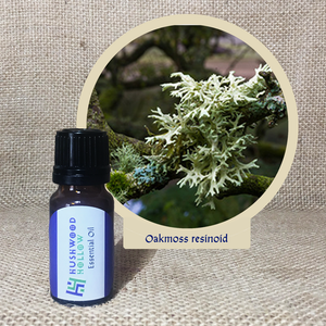 Oakmoss resinoid - Pure Therapeutic Grade Essential Oil