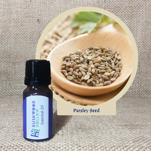 Parsley Seed - Pure Therapeutic Grade Essential Oil - Hushwood Hollow