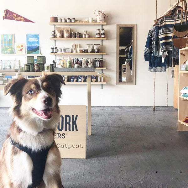 NEWS | New York Makers Joins Catskills Cooperative In Up-And-Coming Mountaindale, New York