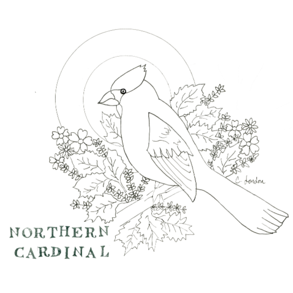 AWAKENING | Harlem Hill's Coloring Pages of Beautiful Birds to Download At Home
