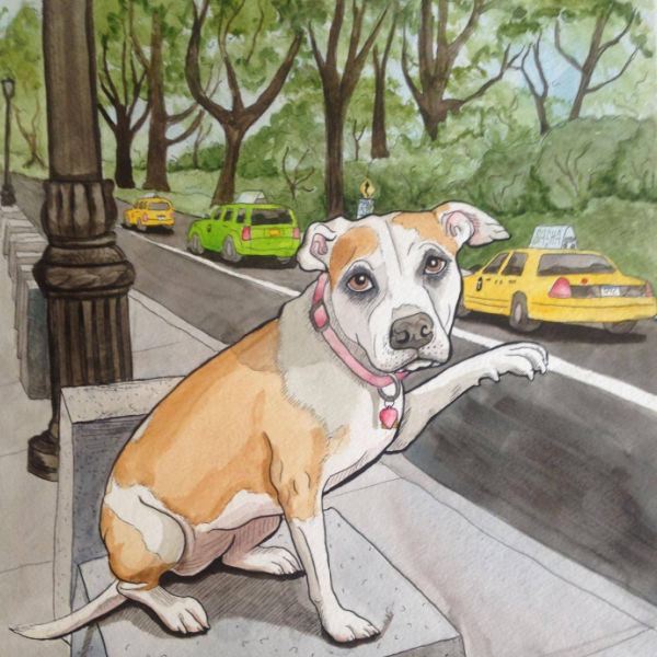 PLAYFUL | You, Too, Can Find Joy As a Pet Portrait Artist...with a Little Help from Michele Cahill