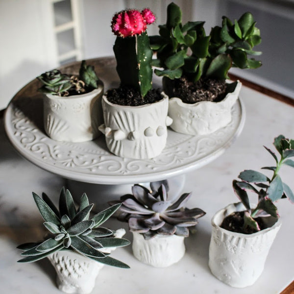 GROWING | Make Your Own Clay Planter