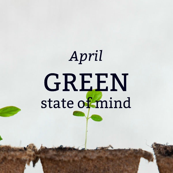 "April 2018: New York ""Green"" State of Mind"