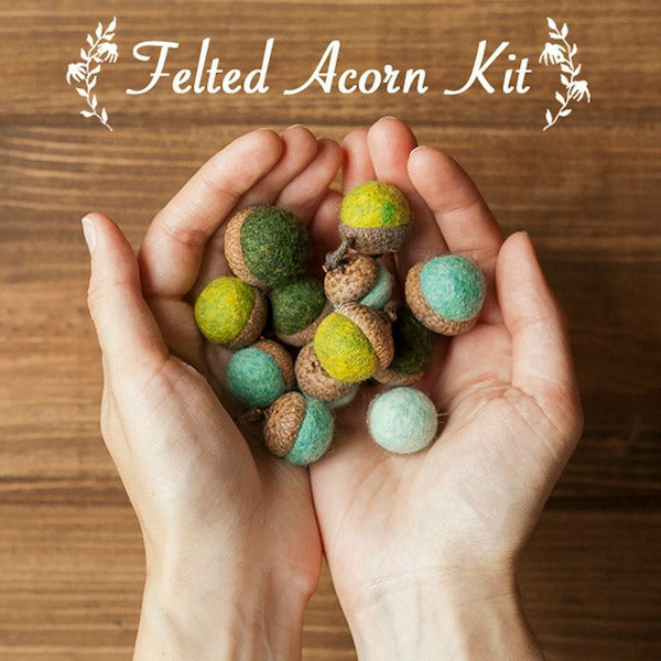 Acorn Needle Felting Kit - Grey Fox Felting - New York Makers