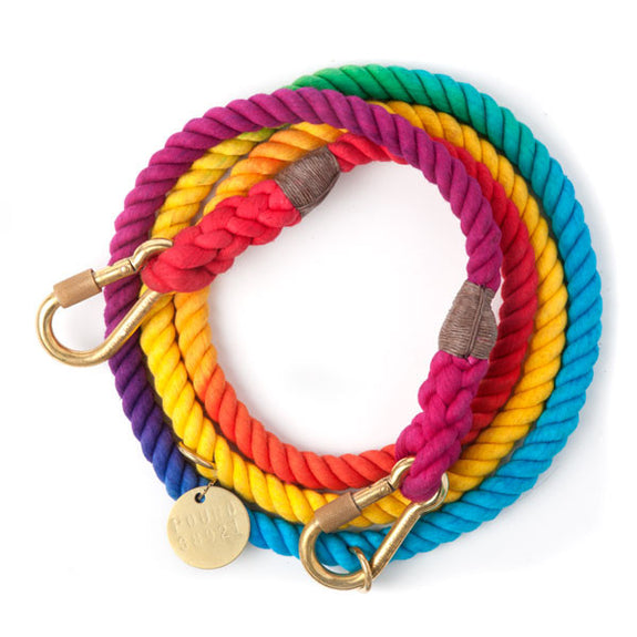 Rope Dog Leash in Prismatic Colors
