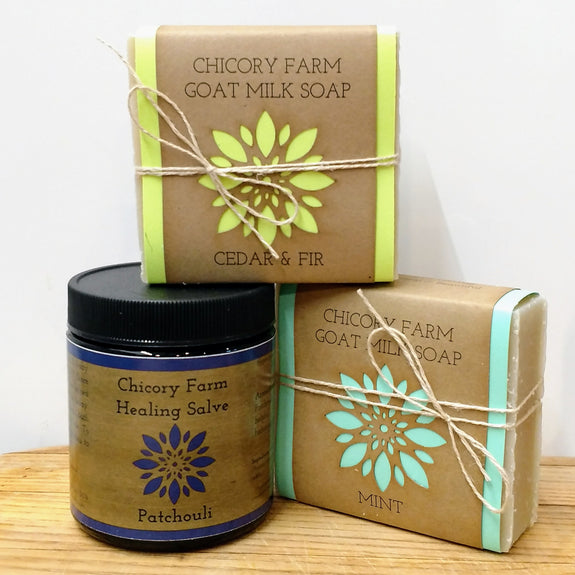 Earthy Soap and Salve Set - Chicory Farm Soap - New York Makers