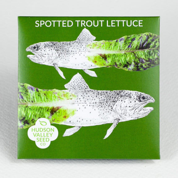 Spotted Trout Lettuce Seeds