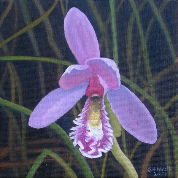 """Rose Pogonia"" Original Oil Painting"