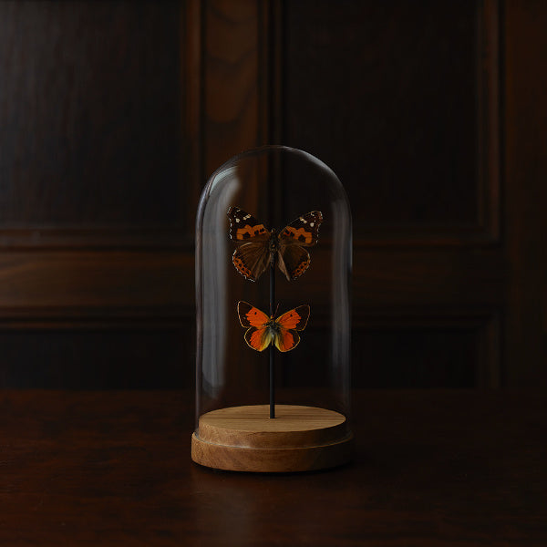 Colorful Small Butterfly Cloche - The Farmhouse Project - New York Makers