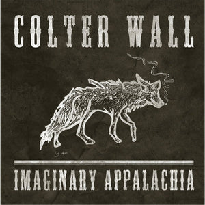 Imaginary Appalachia EP on Vinyl